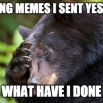 yao, what have you done! bear | CHECKING MEMES I SENT YESTERDAY WHAT HAVE I DONE | image tagged in yao what have you done bear | made w/ Imgflip meme maker