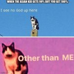 Hail pole cat | WHEN THE ASIAN KID GETS 99% BUT YOU GET 100%: | image tagged in hail pole cat | made w/ Imgflip meme maker
