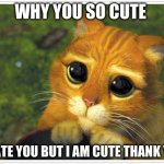 Shrek Cat Meme | WHY YOU SO CUTE I HATE YOU BUT I AM CUTE THANK YOU | image tagged in memes,shrek cat | made w/ Imgflip meme maker