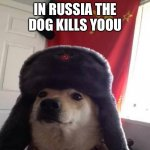 Russian Doge | IN RUSSIA THE DOG KILLS YOOU | image tagged in russian doge | made w/ Imgflip meme maker