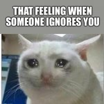 That feeling... | THAT FEELING WHEN SOMEONE IGNORES YOU | image tagged in crying cat | made w/ Imgflip meme maker