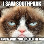 Grumpy Cat Not Amused Meme | I SAW SOUTHPARK NOW I KNOW WHY YOU CALLED ME CARTMAN | image tagged in memes,grumpy cat not amused,grumpy cat | made w/ Imgflip meme maker