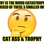 catastrophe | WHY IS THE WORD CATASTROPHE COMPRISED OF THESE 3 SMALLER WORDS? CAT ASS & TROPHY | image tagged in thinking emoji,funny,meme,memes,funny memes,funny meme | made w/ Imgflip meme maker