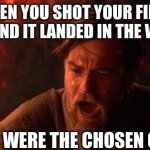 Bird Hunting be like | WHEN YOU SHOT YOUR FIRST BIRD AND IT LANDED IN THE WOODS YOU WERE THE CHOSEN ONE! | image tagged in memes,you were the chosen one star wars,birds | made w/ Imgflip meme maker