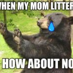 How About No Bear Meme | WHEN MY MOM LITTERS ME | image tagged in memes,how about no bear | made w/ Imgflip meme maker