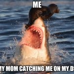 Travelonshark Meme | ME MY MOM CATCHING ME ON MY DS | image tagged in memes,travelonshark | made w/ Imgflip meme maker