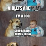 Dad Joke Dog Meme | ROSES ARE I'M A DOG VIOLETS ARE STOP READING MEMES TODAY GRAY GRAY | image tagged in memes,dad joke dog | made w/ Imgflip meme maker