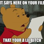 Winnie The Pooh | IT SAYS HERE ON YOUR FILE THAT YOUR A LIL BITCH | image tagged in winnie the pooh | made w/ Imgflip meme maker