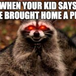 Evil Plotting Raccoon Meme | WHEN YOUR KID SAYS HE BROUGHT HOME A PET | image tagged in memes,evil plotting raccoon | made w/ Imgflip meme maker