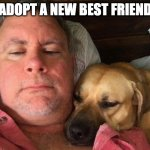 Adopt a New Best Friend | ADOPT A NEW BEST FRIEND | image tagged in adopt,dogs,dog,friends,friendship,love | made w/ Imgflip meme maker