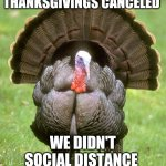 Canceled Thanksgiving | THANKSGIVINGS CANCELED WE DIDN'T SOCIAL DISTANCE | image tagged in memes,turkey | made w/ Imgflip meme maker