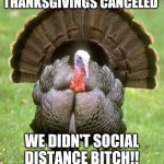 Thanksgivings Canceled | THANKSGIVINGS CANCELED WE DIDN'T SOCIAL DISTANCE BITCH!! | image tagged in memes,turkey | made w/ Imgflip meme maker