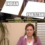 They are the same picture | INDIAN PAKISTANI | image tagged in they are the same picture | made w/ Imgflip meme maker