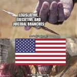 Perfectly Balanced | LEGISLATIVE, EXECUTIVE, AND JUICIDAL BRANCHES | image tagged in perfectly balanced | made w/ Imgflip meme maker