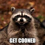 Ok then | GET COONED | image tagged in memes,evil plotting raccoon | made w/ Imgflip meme maker