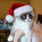 Grumpy Cat for the holidays | I GOT YOU A BORING MEETING FOR CHRISTMAS | image tagged in memes,grumpy cat christmas,grumpy cat | made w/ Imgflip meme maker