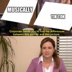 They are the same picture | MUSICALLY TIK TOK | image tagged in they are the same picture | made w/ Imgflip meme maker