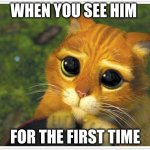 Shrek Cat Meme | WHEN YOU SEE HIM FOR THE FIRST TIME | image tagged in memes,shrek cat | made w/ Imgflip meme maker