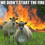 Evil Cows Meme | WE DIDN'T START THE FIRE | image tagged in memes,evil cows | made w/ Imgflip meme maker