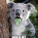 Surprised Koala Meme | ME AT DINNER WHEN MY PARENTS CALL ME OUT | image tagged in memes,surprised koala,food,parents | made w/ Imgflip meme maker