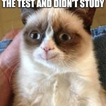 Grumpy Cat Happy Meme | WHEN YOU GET AN A+ IN THE TEST AND DIDN'T STUDY | image tagged in memes,grumpy cat happy,grumpy cat | made w/ Imgflip meme maker