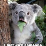 It aint over till I Sing | ELECTION? I Just wish someone would rub my tummy! | image tagged in memes,surprised koala | made w/ Imgflip meme maker