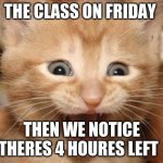 Excited Cat | THE CLASS ON FRIDAY THEN WE NOTICE THERE'S 4 HOURS LEFT | image tagged in memes,excited cat | made w/ Imgflip meme maker