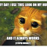 Shrek Cat Meme | EVERY DAY I USE THIS LOOK ON MY HUMAN AND IT ALWAYS WORKS {STUPID MONKEY} | image tagged in memes,shrek cat | made w/ Imgflip meme maker