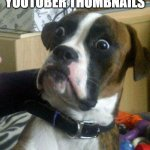 Blankie the Shocked Dog | LOOKING AT YOUTUBER THUMBNAILS | image tagged in blankie the shocked dog | made w/ Imgflip meme maker
