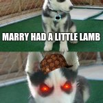 Insanity Puppy Meme | MARRY HAD A LITTLE LAMB HAD | image tagged in memes,insanity puppy | made w/ Imgflip meme maker