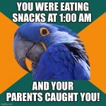 Paranoid Parrot | YOU WERE EATING SNACKS AT 1:00 AM AND YOUR PARENTS CAUGHT YOU! | image tagged in memes,paranoid parrot | made w/ Imgflip meme maker