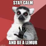 Stay calm | STAY CALM AND BE A LEMUR | image tagged in memes,chill out lemur | made w/ Imgflip meme maker