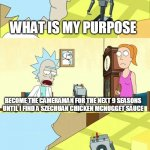 What's My Purpose - Butter Robot | WHAT IS MY PURPOSE BECOME THE CAMERAMAN FOR THE NEXT 9 SEASONS UNTIL I FIND A SZECHUAN CHICKEN MCNUGGET SAUCE OH MY GOD | image tagged in what's my purpose - butter robot | made w/ Imgflip meme maker