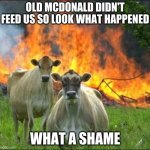 Evil Cows Meme | OLD MCDONALD DIDN'T FEED US SO LOOK WHAT HAPPENED WHAT A SHAME | image tagged in memes,evil cows | made w/ Imgflip meme maker