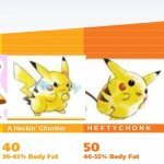 PikaCHONK | image tagged in chonk chart | made w/ Imgflip meme maker