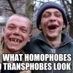 Ugly Twins | WHAT HOMOPHOBES AND TRANSPHOBES LOOK LIKE | image tagged in memes,ugly twins | made w/ Imgflip meme maker
