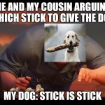 Math is Math! | ME AND MY COUSIN ARGUING WHICH STICK TO GIVE THE DOG MY DOG: STICK IS STICK | image tagged in math is math | made w/ Imgflip meme maker