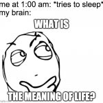 hmmm | me at 1:00 am: *tries to sleep* my brain: THE MEANING OF LIFE? WHAT IS | image tagged in hmmm | made w/ Imgflip meme maker