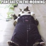 Fat Cat Meme | HOW I FEEL WHEN I EAT A WHOLE BUNCH OF PANCAKES IN THE MORNING | image tagged in memes,fat cat | made w/ Imgflip meme maker