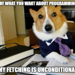 Lawyer Corgi Dog | SAY WHAT YOU WANT ABOUT PROGRAMMING MY FETCHING IS UNCONDITIONAL | image tagged in lawyer corgi dog | made w/ Imgflip meme maker