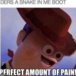 Yay! I'm gonna die! | PERFECT AMOUNT OF PAIN! | image tagged in yeet,woody,face,funny,unlucky | made w/ Imgflip meme maker