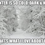 I'm from Alaska | WINTER IS SO COLD, DARK & WET. THAT'S WHAT I LOVE ABOUT IT! | image tagged in snowy forest,funny but true,alaska,winter is here,happiness,north | made w/ Imgflip meme maker