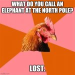 Anti Joke Chicken | WHAT DO YOU CALL AN ELEPHANT AT THE NORTH POLE? LOST. | image tagged in memes,anti joke chicken,elephants,north,pole | made w/ Imgflip meme maker