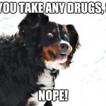 Crazy Dawg Meme | DID YOU TAKE ANY DRUGS, SIR? NOPE! | image tagged in memes,crazy dawg,funny,drugs | made w/ Imgflip meme maker