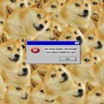 out of ram | Too many doges, not enough ram, please delete for ram | image tagged in memes,multi doge | made w/ Imgflip meme maker