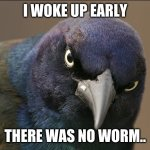 no worm.. | I WOKE UP EARLY THERE WAS NO WORM.. | image tagged in the original angry bird | made w/ Imgflip meme maker
