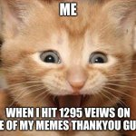 Excited Cat | ME WHEN I HIT 1295 VEIWS ON ONE OF MY MEMES THANKYOU GUYS. | image tagged in memes,excited cat | made w/ Imgflip meme maker