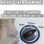 Oof size large | RIHANNA: SHINE BRIGHT LIKE A DIAMOND! ALBERT EINSTEIN: DIAMONDS DON'T SHINE IDIOT, THEY REFLECT! | image tagged in oof size large | made w/ Imgflip meme maker