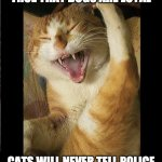 Cats vs dogs | WHILE IT IS CERTAINLY TRUE THAT DOGS ARE LOYAL CATS WILL NEVER TELL POLICE WHERE YOU HIDE YOUR DRUGS. | image tagged in laughing cat | made w/ Imgflip meme maker