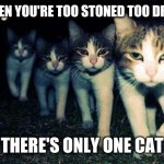 Wrong Neighboorhood Cats Meme | WHEN YOU'RE TOO STONED TOO DRIVE THERE'S ONLY ONE CAT | image tagged in memes,wrong neighboorhood cats | made w/ Imgflip meme maker